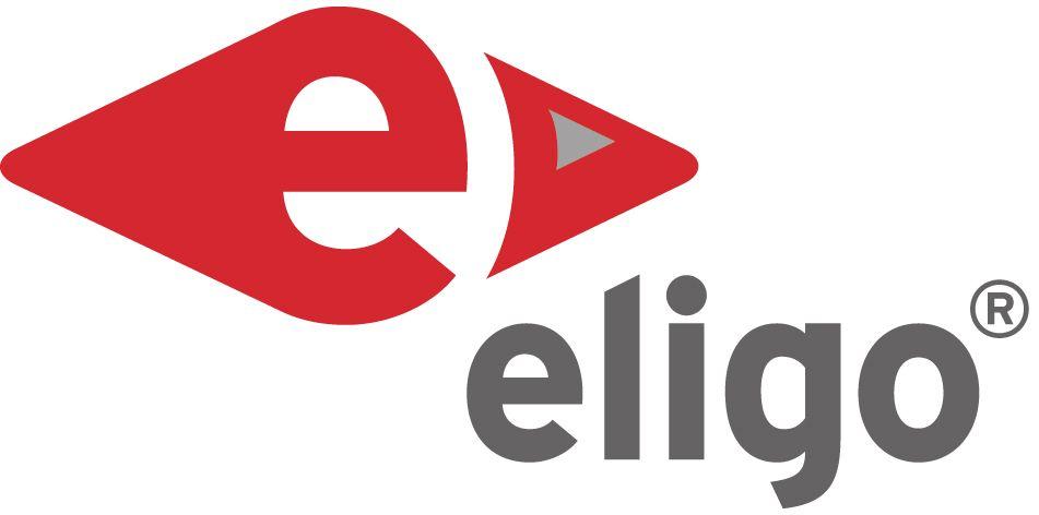 ELIGO Psychologische Personalsoftware GmbH